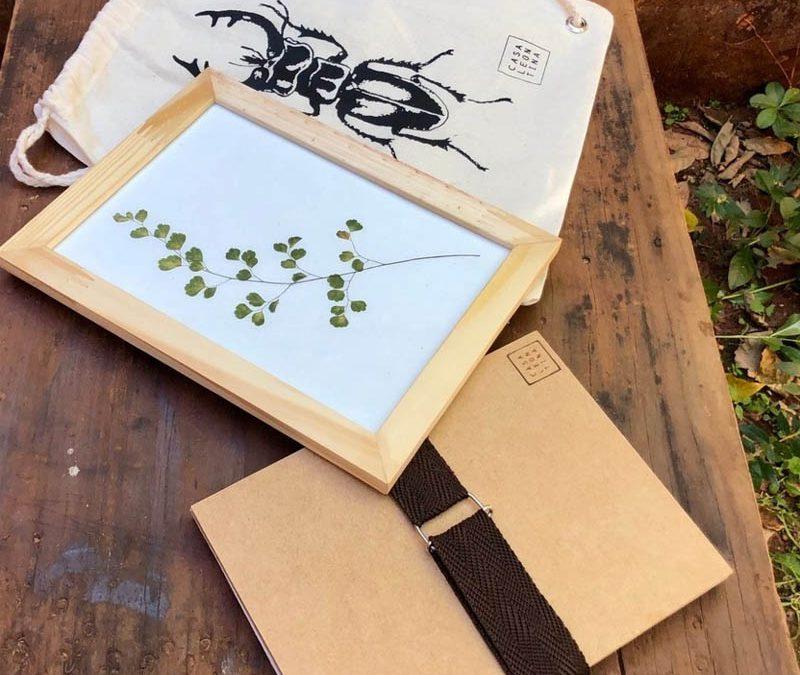 Kit Prensa botânica: crie sua arte com plantas